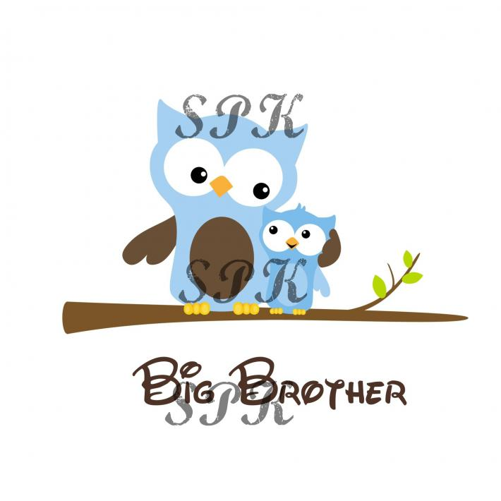 Big Brother Little Brown Blue Owls Baby Onesie Toddler Tshirt Many Sizes Free Shipping