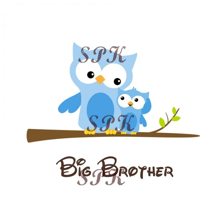 Big Brother Little Brother Brown Blue Owls Baby Bodysuit Toddler Tshirt Many Sizes Free Shipping