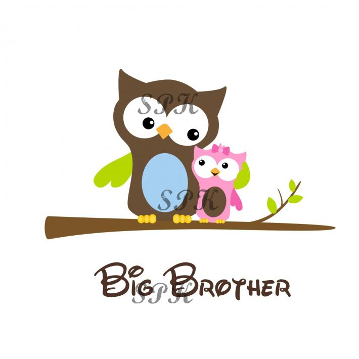 Big Brother Little Sister Baby Onesie Toddler Tshirt Many Sizes Many Colors