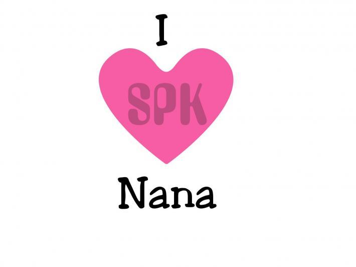 I Love Nana Baby Bodysuit Toddler and Youth Tshirt Free Shipping