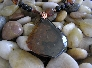 Warmth of the Sun    Brazilian Black Agate Necklace