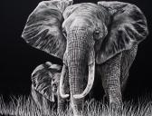 Scratch Art Elephant and Baby