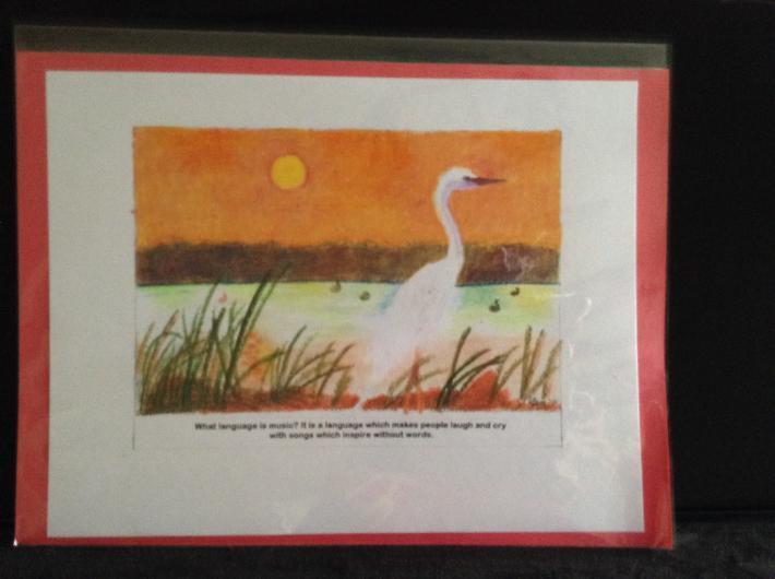 Swan by a Lake