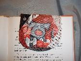 MAGNETIC Bookmark    Hog Days